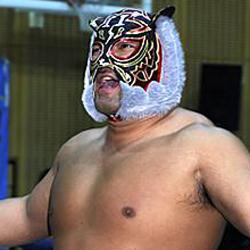 black tiger 6